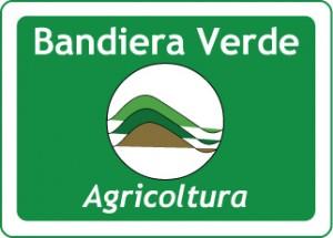 bandiera_verde-300x215