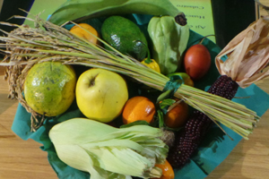 verdure cereali autoctoni esotici cia milano