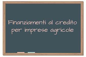 Finanziamenti al credito